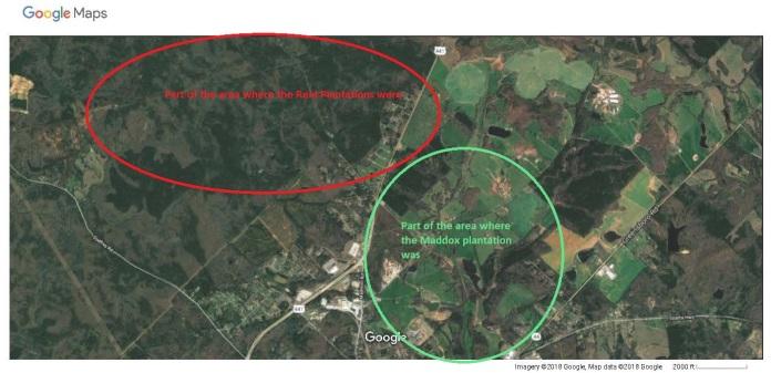Google Maps reid Maddox